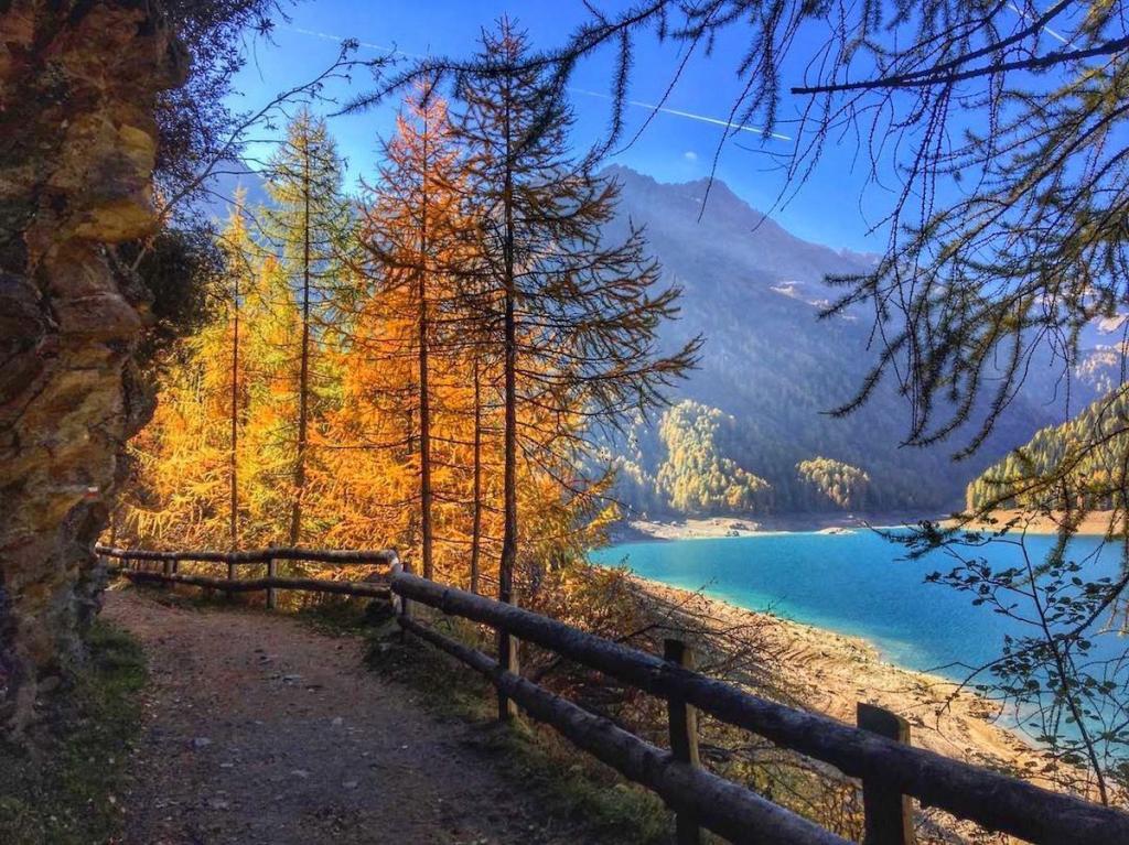 lago-di-pian-palu-autunno-iaia-corte-chaletalpenrose