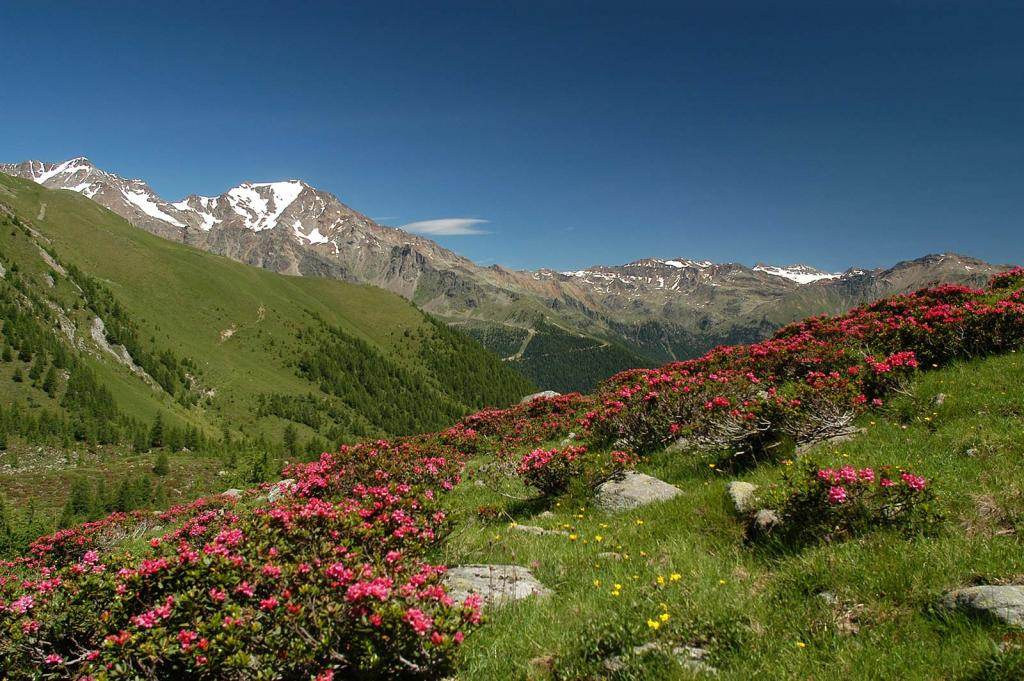 sommer urlaub Italien