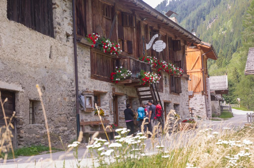 wander tag_chalet_alpenrose_val_di_sole