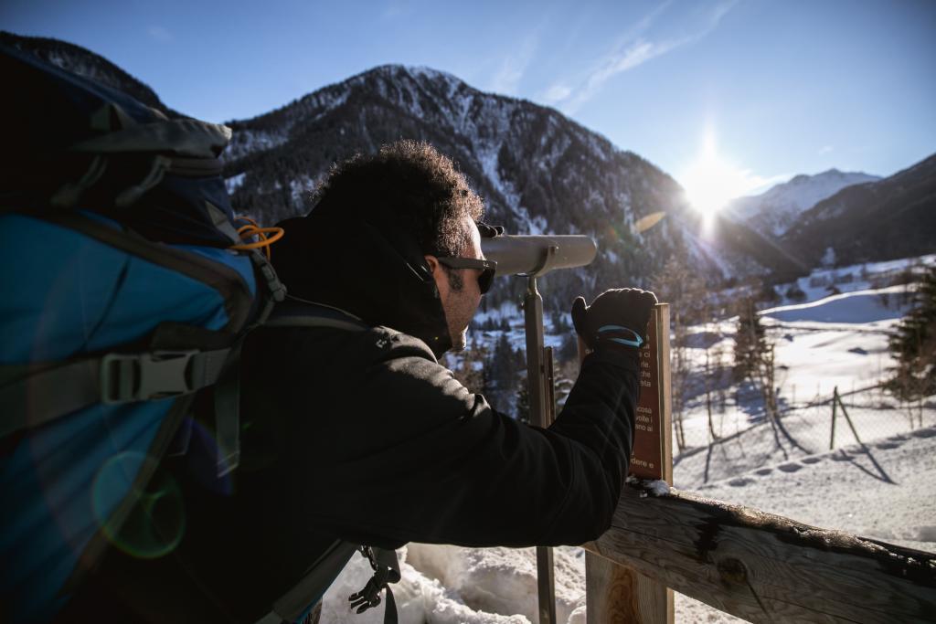 wildlife_Chalet_Alpenrose_Val_di_Sole_Trentino