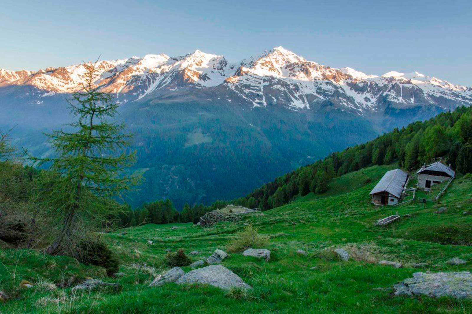 Bio Urlaub in Trentino Südtirol/ Val di Sole